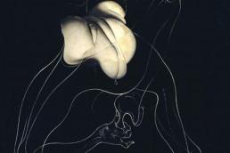 Sans titre (Unica ficelée), de Hans Bellmer (1959)